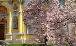 Otwarte zbiory Mazowsza - 10 fascynujących muzeów, które możesz pokazać uczniom nie ruszając się ze szkoły