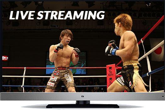 Jak federacje sportowe walczą znielegalnym streamingiem. UFC vs. piraci